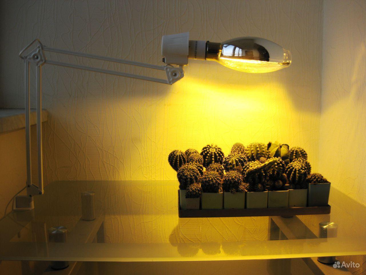 Лампа для подсветки растений своими руками