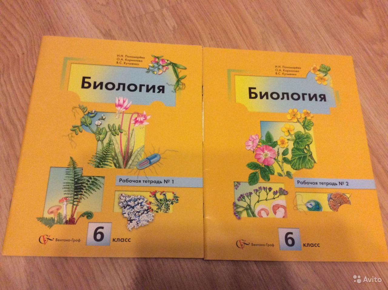 класс корнилова 6 кучменко биологии тетради гдз пономарева по
