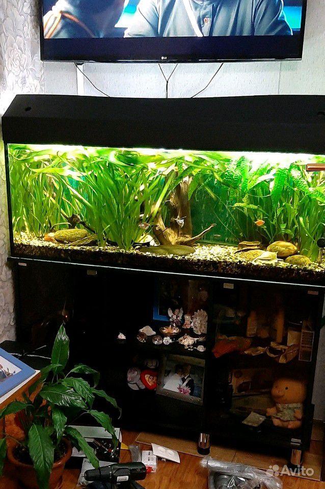 Продам аквариум на 250литров