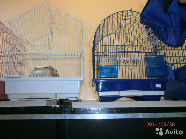 Авито клеточка для попугая