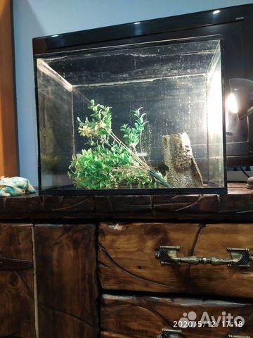 Продам аквариум 89517668098 купить 1
