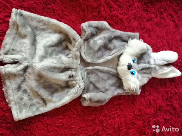 Costumes 89105428937 buy 2