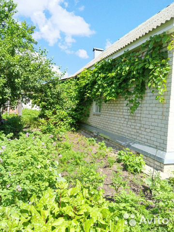 Дом 66 м² на участке 6 сот.  89621469793 купить 2