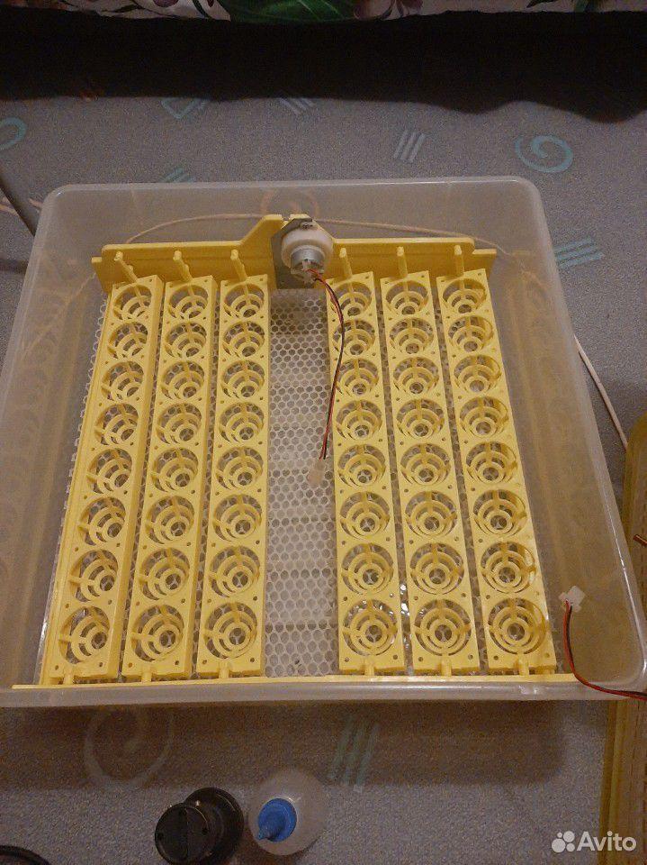 Инкубатор автоматический  89203736145 купить 2