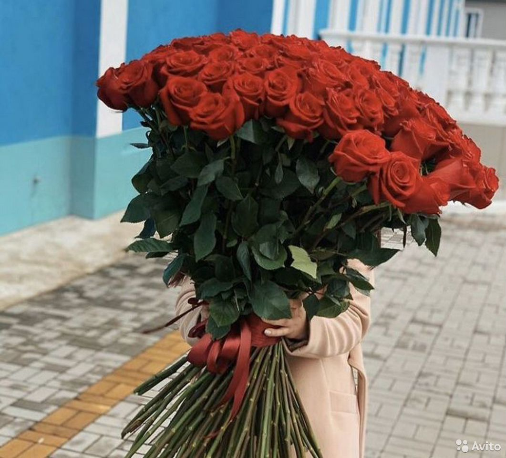 Цветы,для подарка и др  89509217435 купить 2